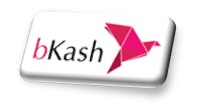 How To Pay Via bKash